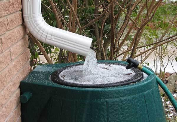 lợi ích của nước mưa